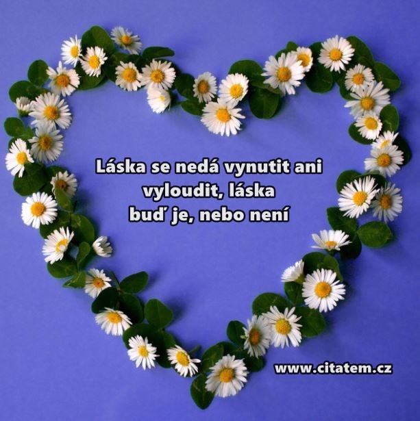 Láska se nedá vynutit ani vyloudit