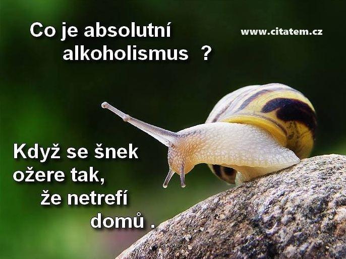 Co je absolutní alkoholismus?
