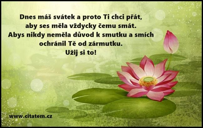 sms blahopřání k narozeninám sms přání | Citátem.cz   Part 2 sms blahopřání k narozeninám