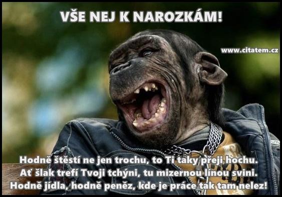 prani k narozeninam vtipne vtipné přání k narozeninám | Citátem.cz prani k narozeninam vtipne