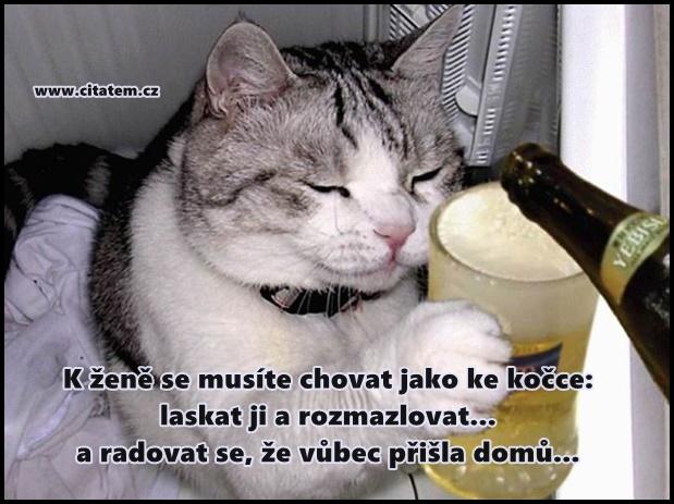 K ženě se musíte chovat jako ke kočce