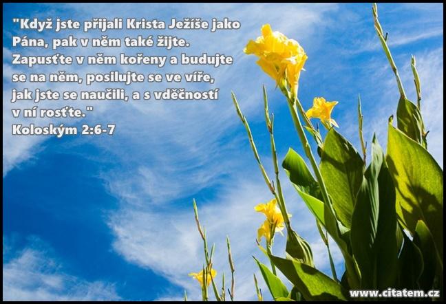 Když jste přijali Krista Ježíše