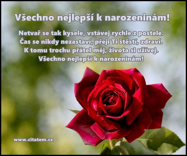 sms blahopřání k narozeninám přání k narozeninám obrázky | Citátem.cz   Part 3 sms blahopřání k narozeninám