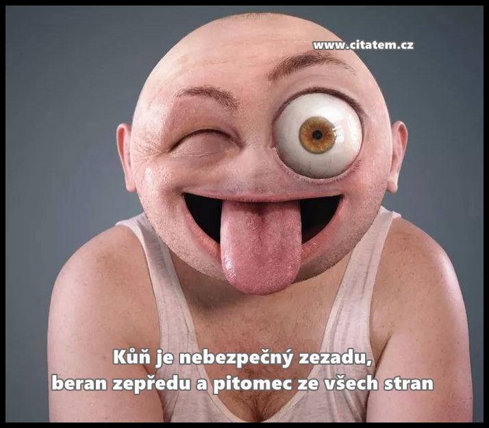 pitomec