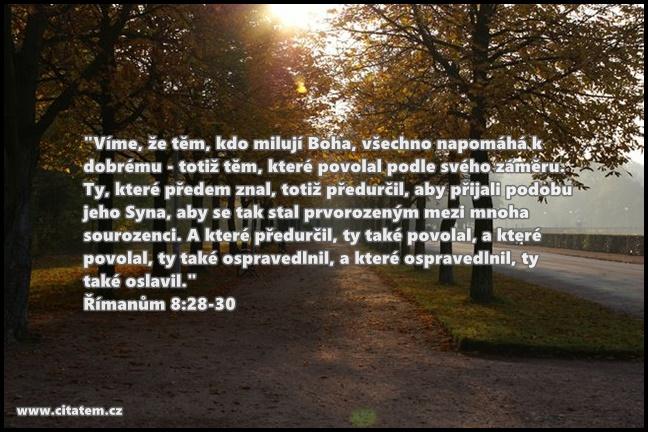 Víme, že těm, kdo milují Boha