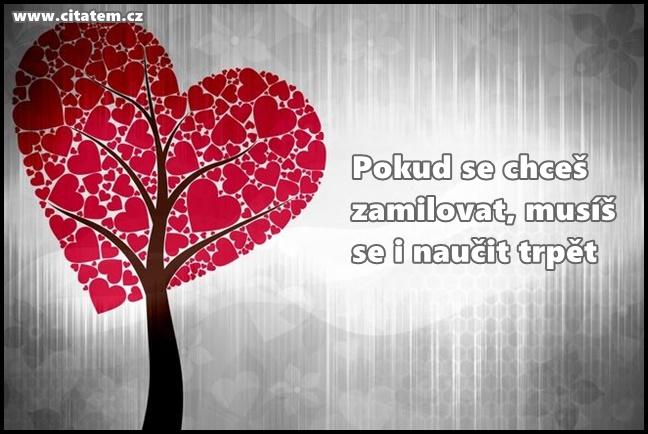 Pokud se chceš zamilovat