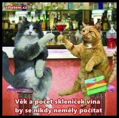 Věk a počet skleniček vína