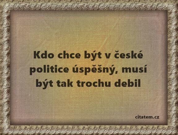 Kdo chce být v české politice úspěšný