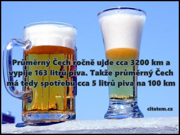 Průměrný Čech